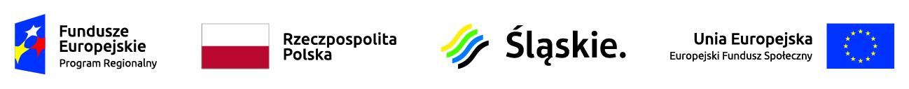 logo EFS Śląskie