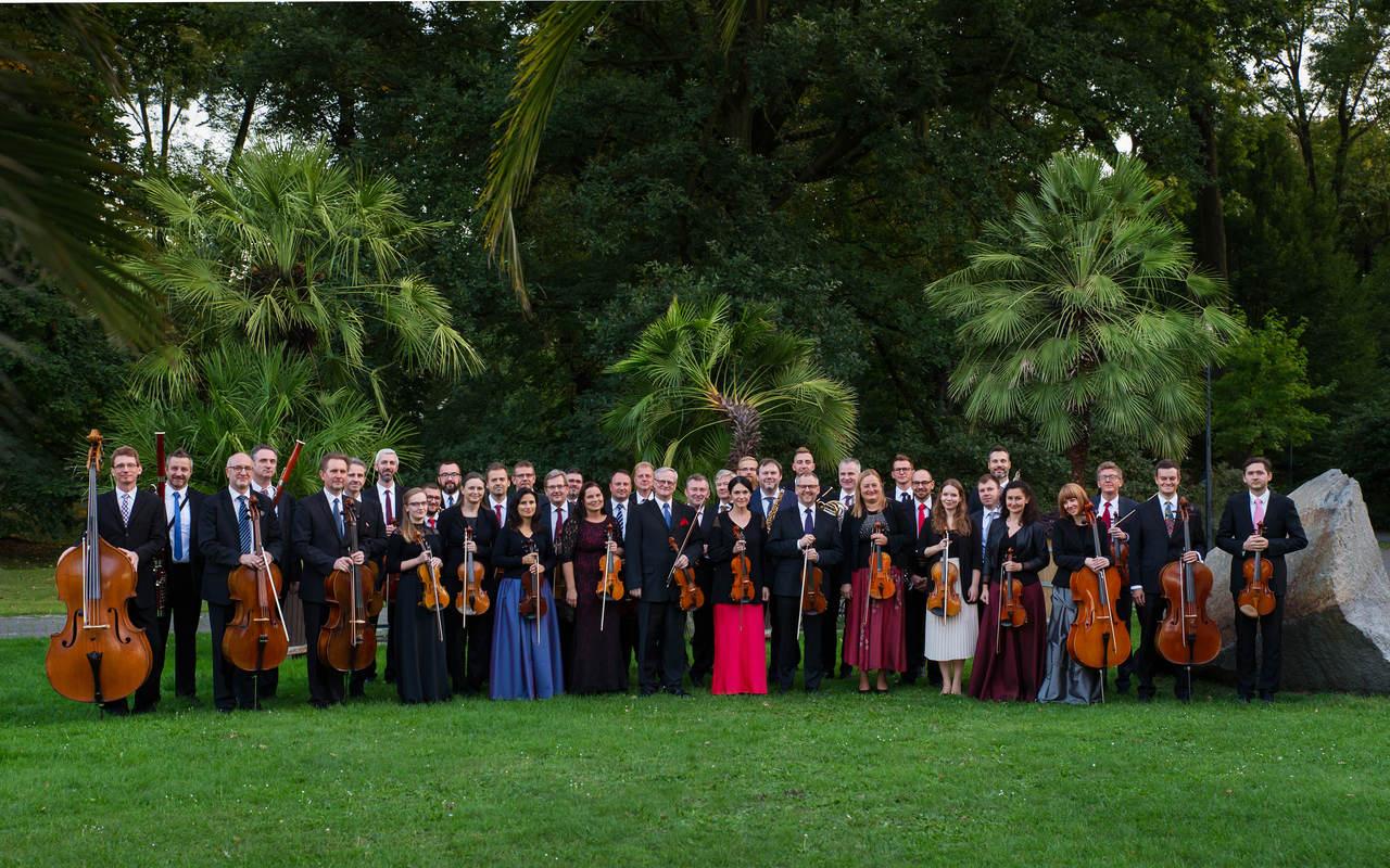 orkiestra na trawie w parku