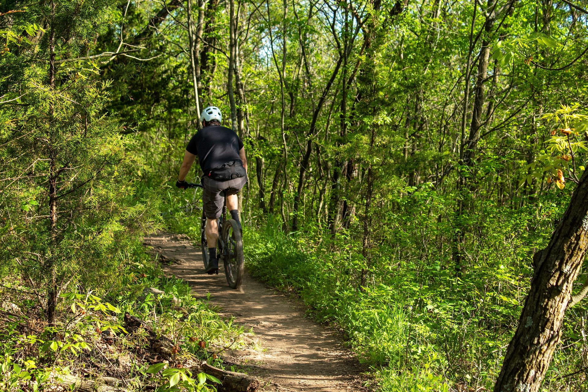 rowerzysta na rowerze w lesie