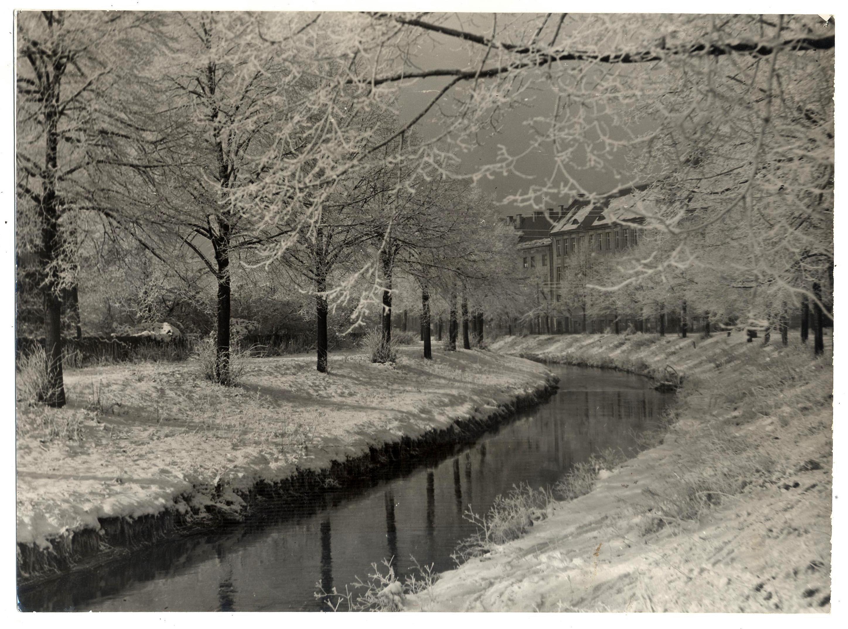 Kanał Kłodnicki zimą