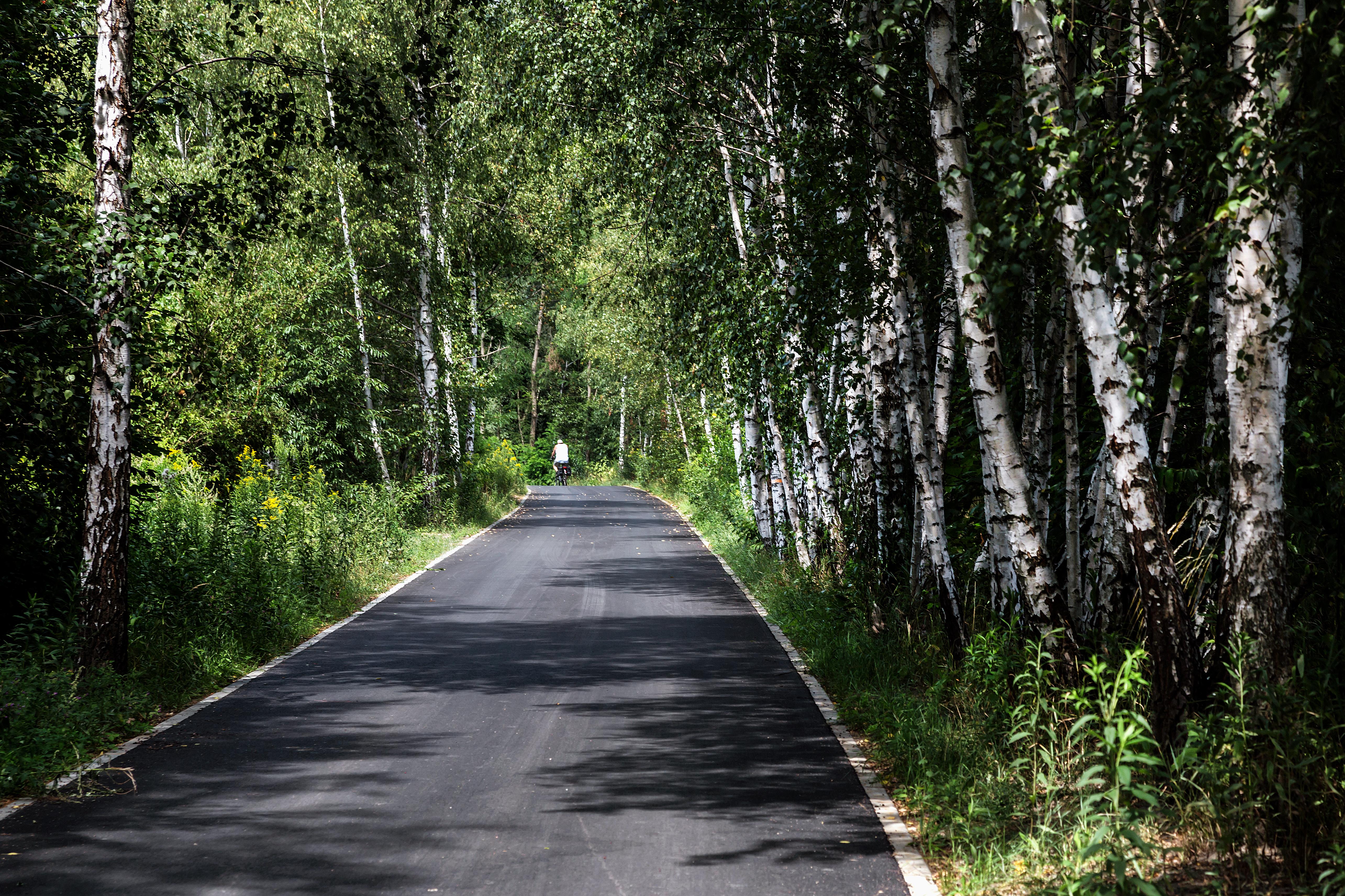 trasa rowerowa ul. Kujawska