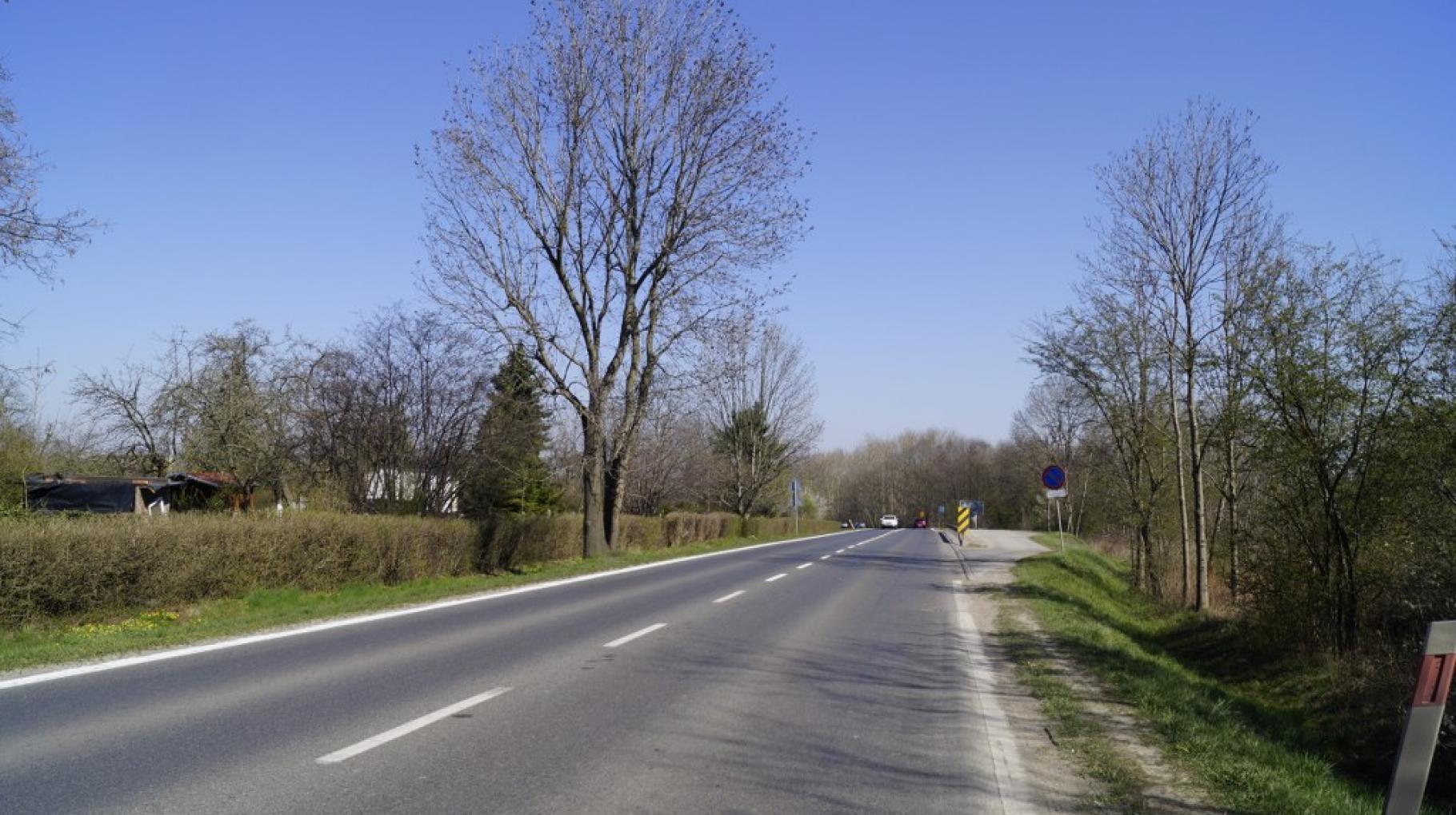Ulica Rybnicka na wysokości ogródków działkowych