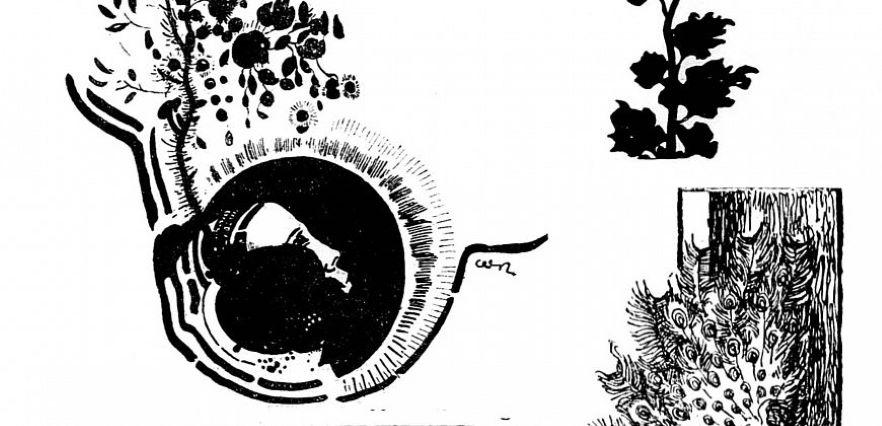 secesyjne czarno-białe motywy