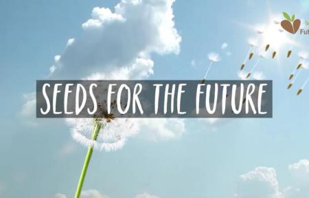 grafika seeds for future